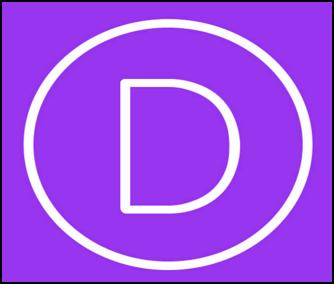 Divi-Theme-Review